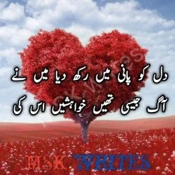 Dil Urdu Poetry
