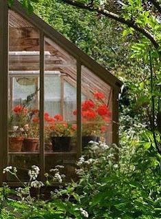 beüvegezett terasz - ajtó, ablak, tető