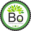 Bo International Logo