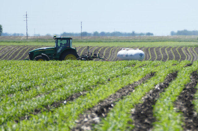 Nitrogen Smart online course fertilizer management