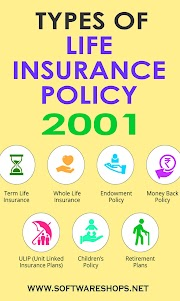 How many types of life insurance are there?