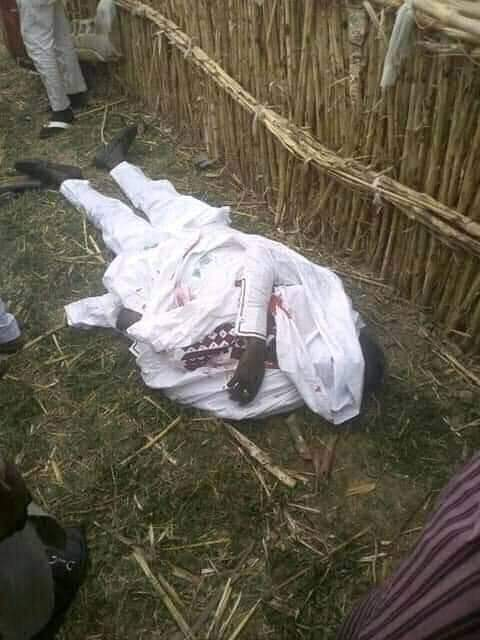 Groom, his brother, sister killed in fatal auto crash on their way to Katsina