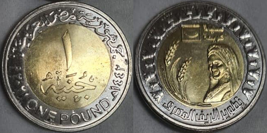 Egypt 1 pound 2021 - Agriculture