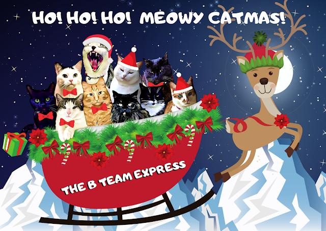 Basil & The B Team Catmas Card 2019 ©BionicBasil®