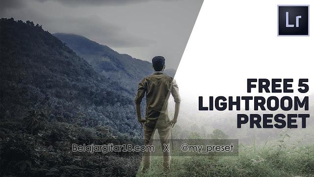 cara menggunakan preset lightroom di android / ios
