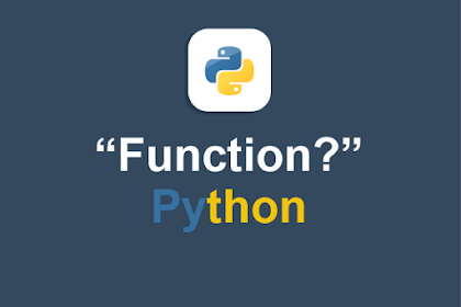 Function Explanation in Python