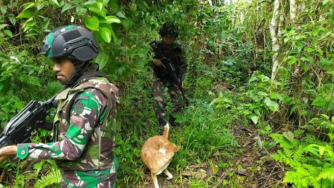 Satgas Raider 300 Bersihkan Hutan Papua Dari Berbagai Ancaman