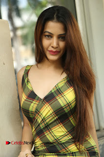 Actress Deeksha Panth Pictures in Jeans at Maya Maal Trailer Launch  0154