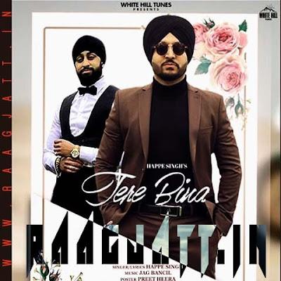 Tere Bina by Happe Singh lyrics