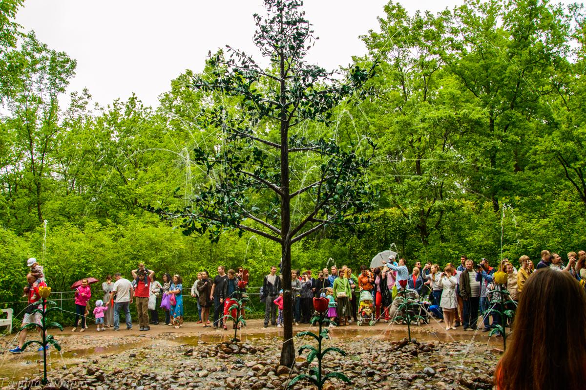 Дерево фонтанов в Нижнем парке Петергофа фото