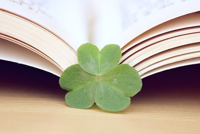 A Clover And The Book by Shashank Mittal Photography, A Clover And The Book, Shashank Mittal Photography,  Shashank Mittal, Photography