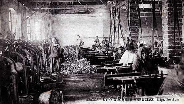 مصنع للفلين بالجزائر إبان الإحتلال
