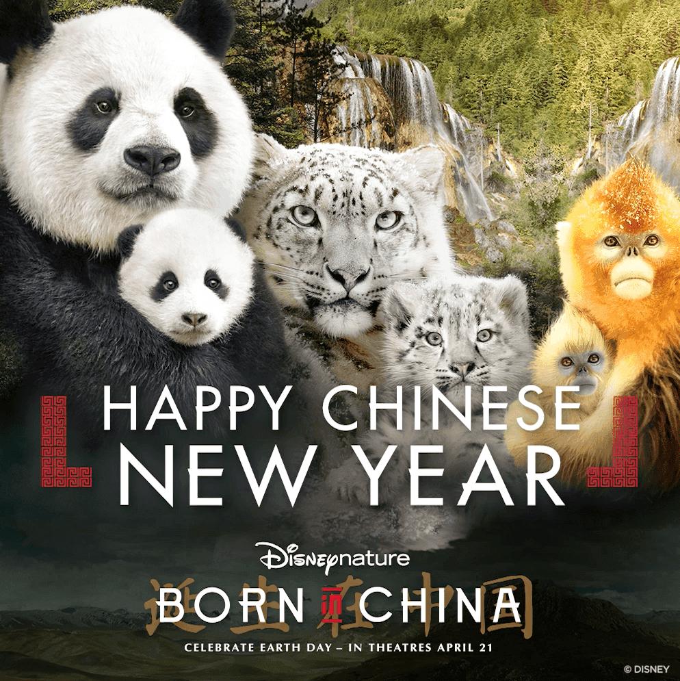 Born in China (2017) John Krasinski