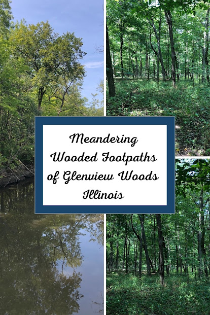 Meandering Wooded Footpaths of Glenview Woods section of Harms Woods in Illinois along the North Branch Trail.