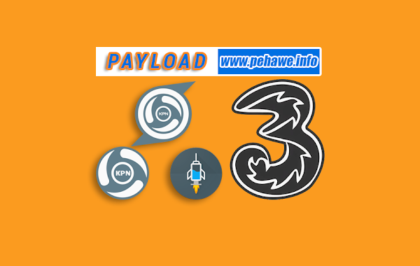 Pehawe Official: Payload
