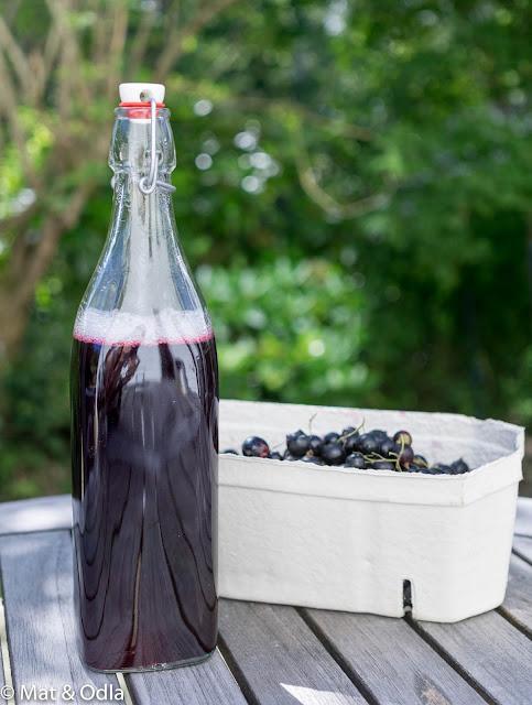 svart vinbärssaft