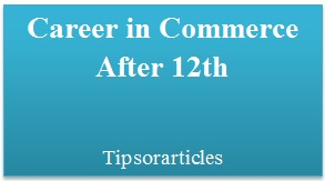 Career in Commerce After 12th