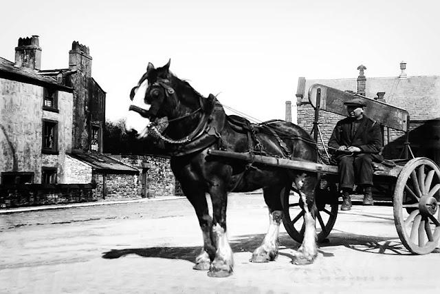 Mr T. Miller & His Coal Cart, Whitehaven