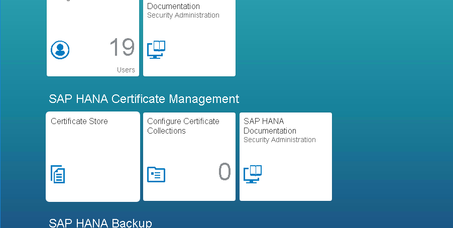 Configuration and setup HANA XS Apps with HANA DB SSO (BASIS Activities)