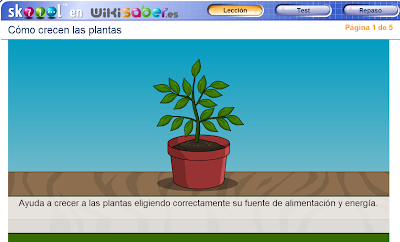 http://ww2.educarchile.cl/UserFiles/P0024/File/skoool/2010/Ciencia/how_plants_grow/