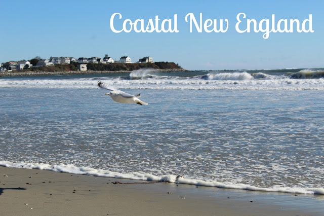 Exploring Coastal New England