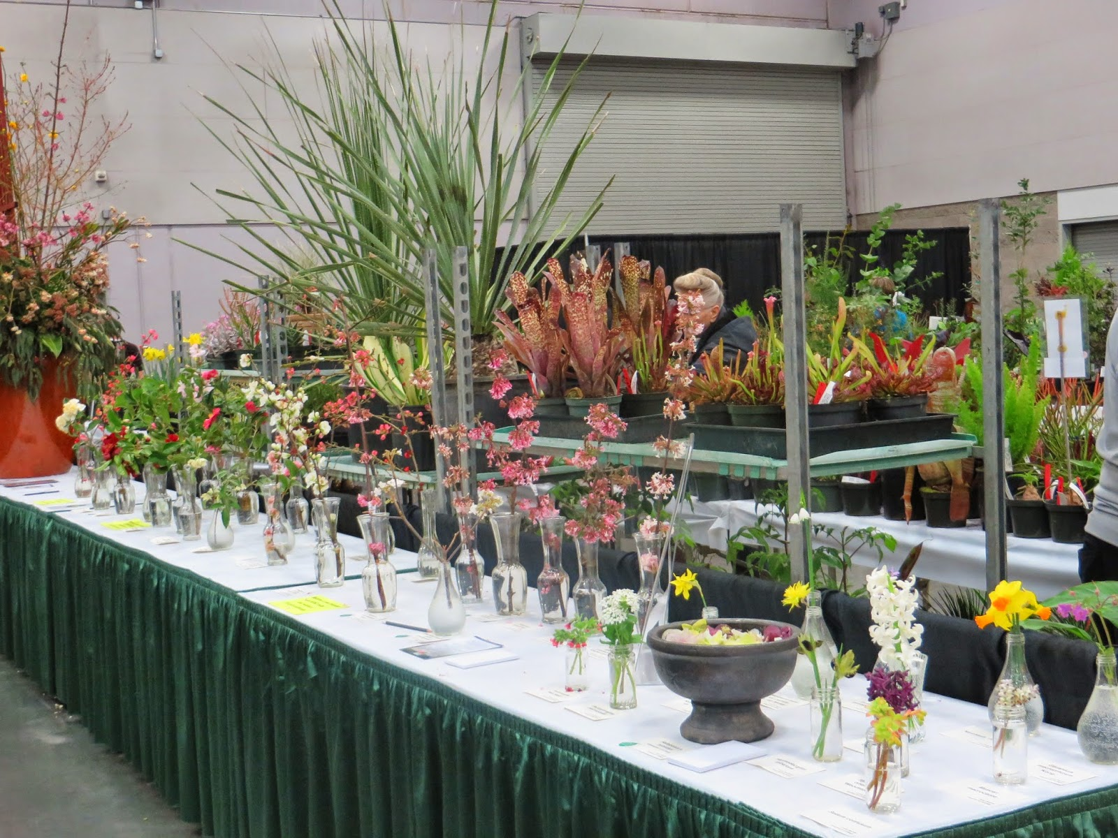 Portland s 2015 Yard Garden and Patio Show