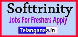 Softtrinity Recruitment Jobs For Freshers Apply