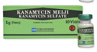 Kanamycin Sulfate