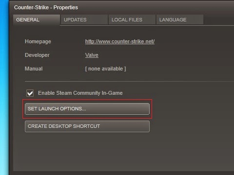 cs 1.6 launch options