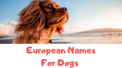 European Names For Dogs