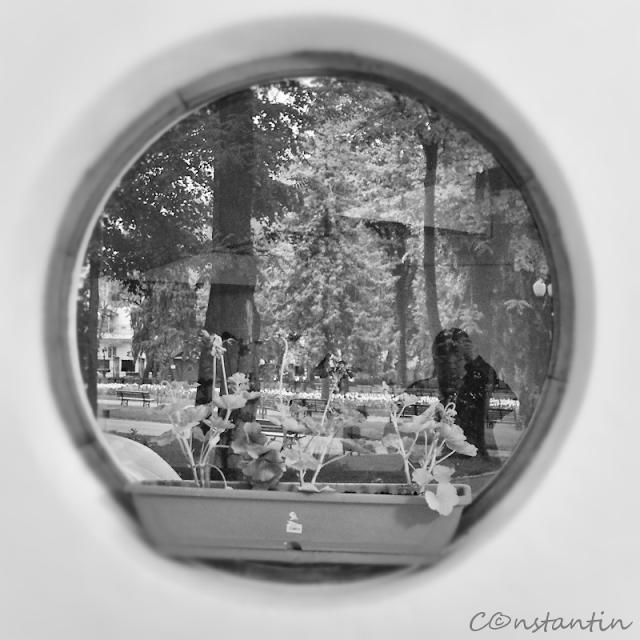 Autoportret cu vedere spre parc - Blog FOTO-IDEEA