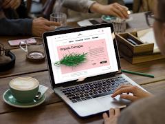 Pengaruh Desain Web Pada Bisnis Online