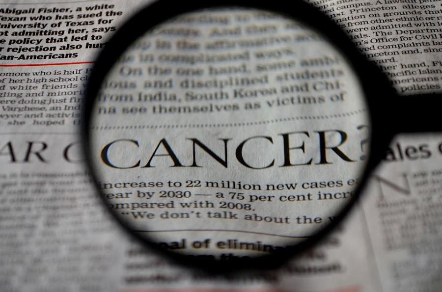 dieta y flora intestinal: prevenir el cáncer de colon
