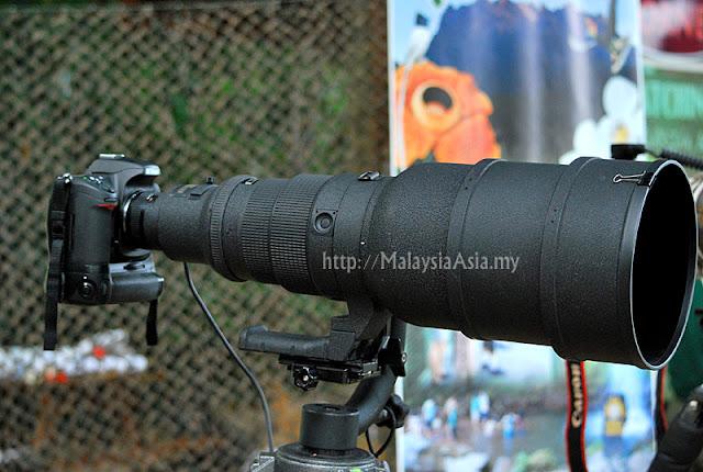 Sabah 600mm lens