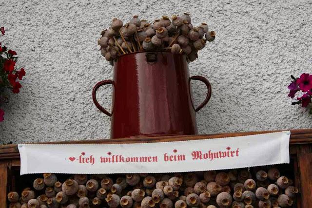 Waldviertel - Im Armschlag dreht sich alles um den Mohn © Copyright Monika Fuchs, TravelWorldOnline