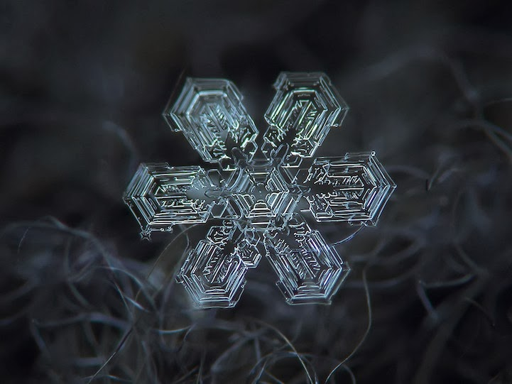 Stunning Macro Details of Uniquely Beautiful Snowflakes With An Inexpensive DIY Camera
