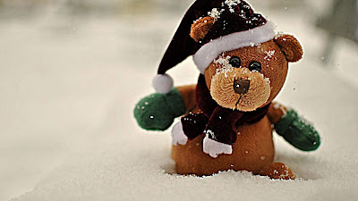 winter-teddy-bear-in-snow-pictures-imgs