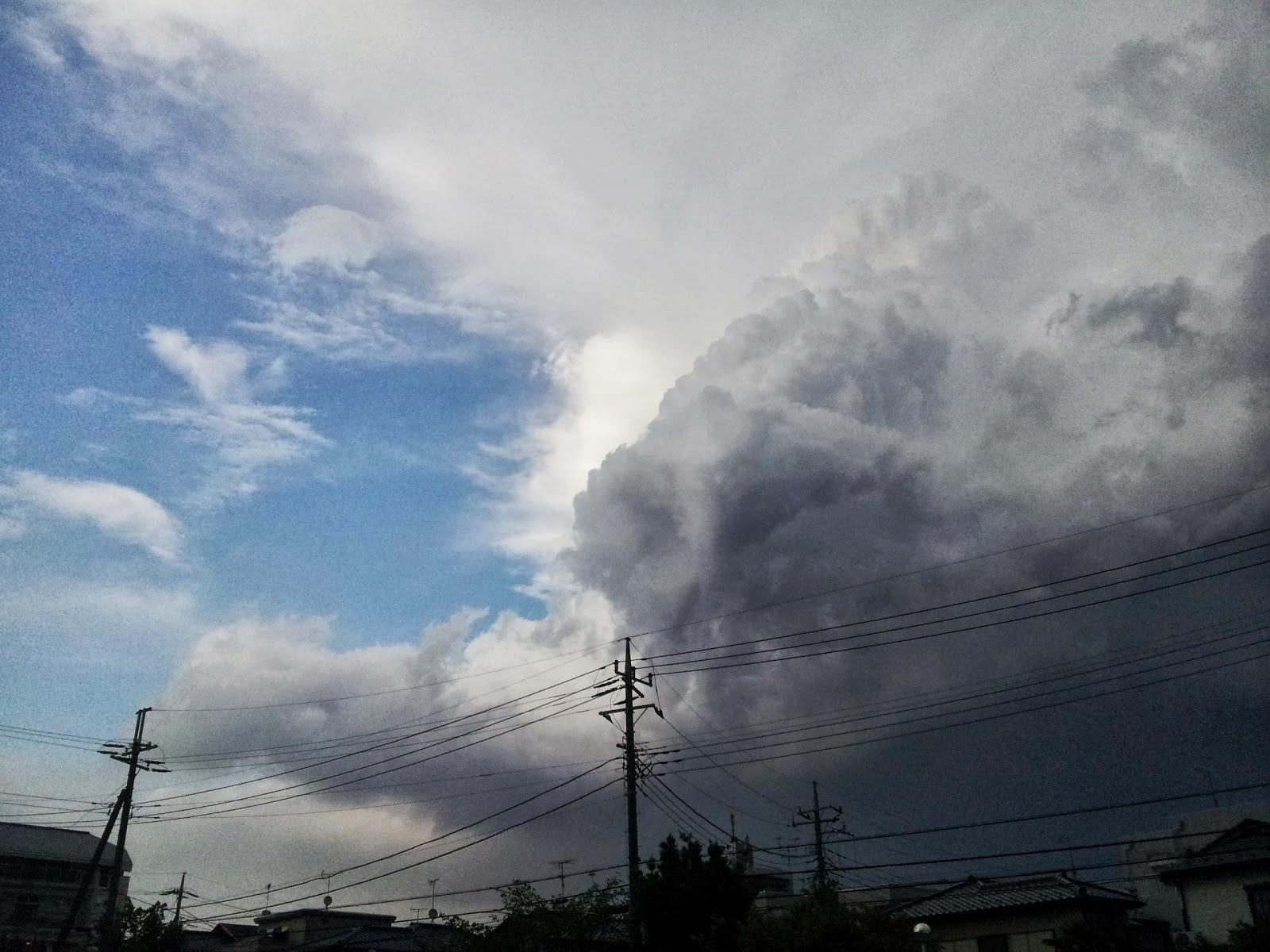 ものぐさ徒然草: 雷と夕立ち