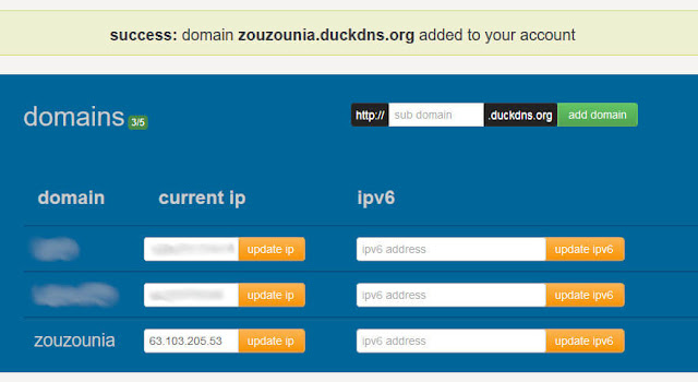 Duck DNS domain name