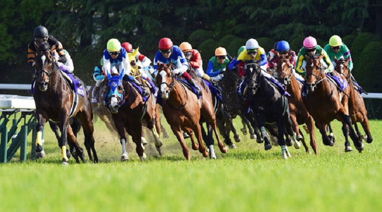 Horse Racing Malaysia
