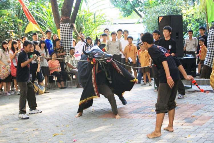 Bantengan, Kesenian Tradisional Dari Malang Jawa Timur