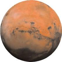 Mars bio data