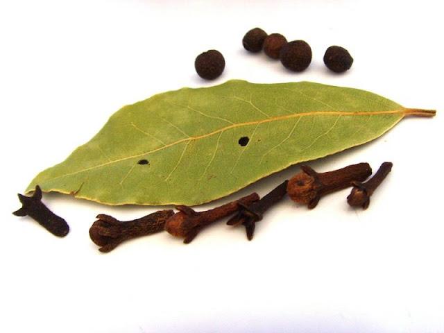 mengusir lalat dengan daun cengkeh