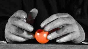 http://www.ksamka.com/ksamka-production--franck-lepage--inculture-s.php
