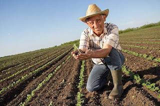 كتاب السياسات الزراعية والمسئلة الفلاحية
