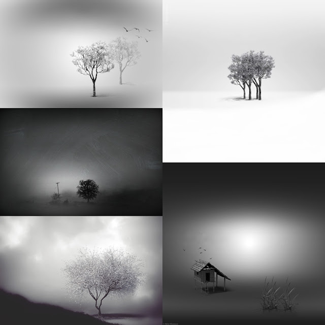 bw minimal images collage