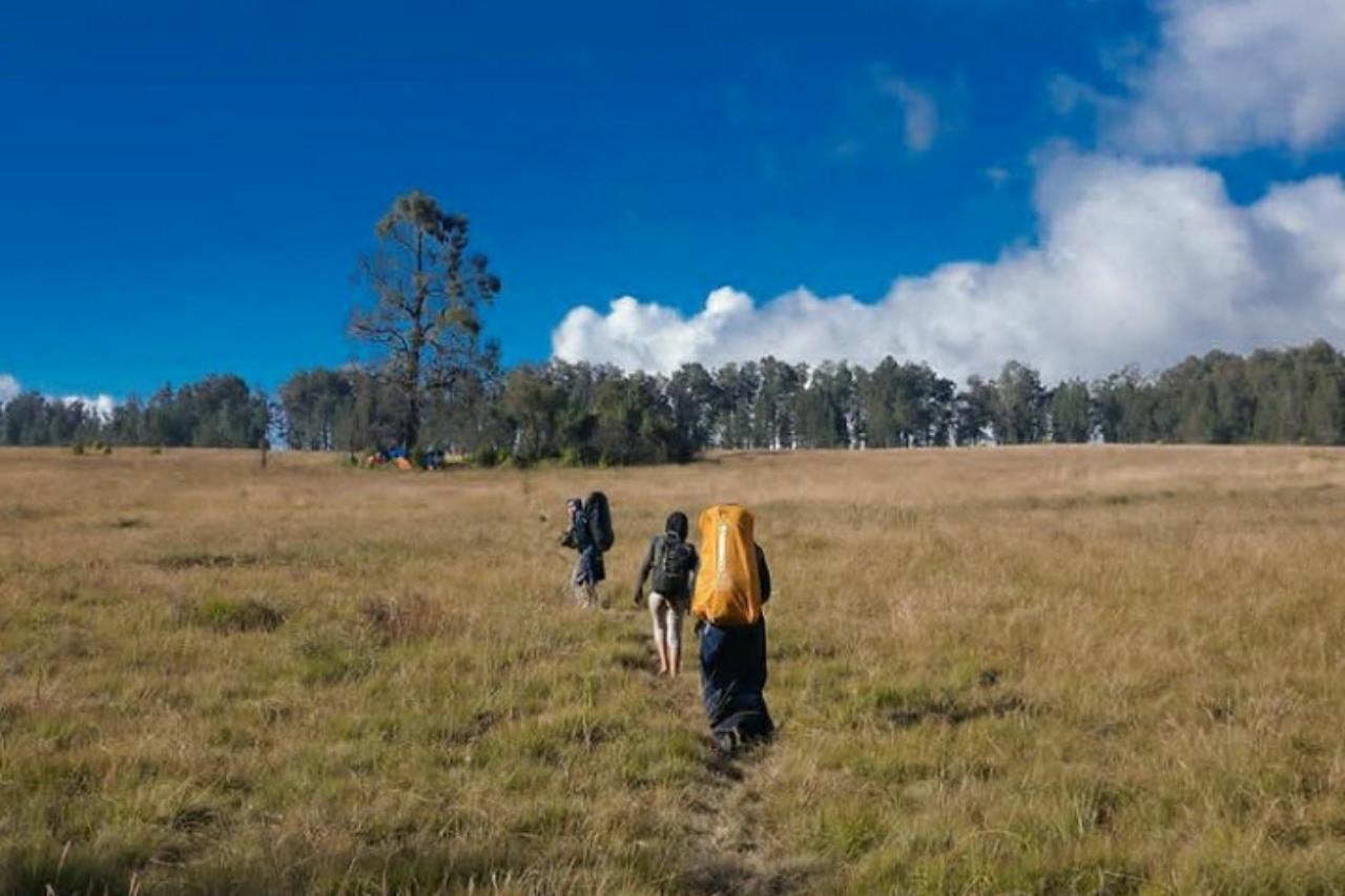 Tempat pendakian gunung di jawa timur
