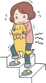 subindo escadas com seu cão