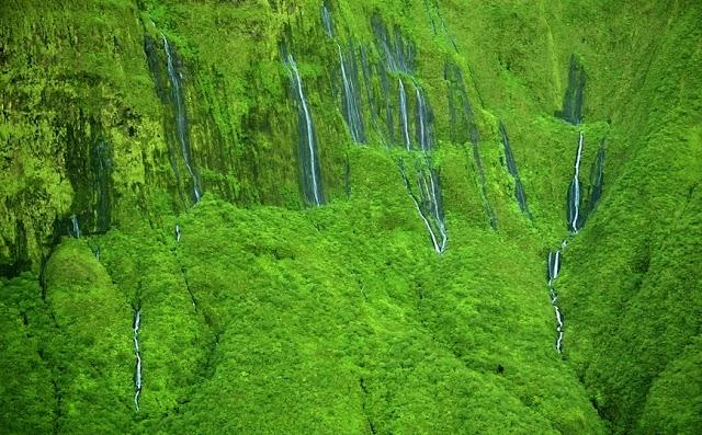 Ο καταπράσινος «τοίχος των δακρύων» στη Χαβάη