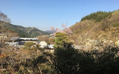 富士屋 部屋からの眺め
